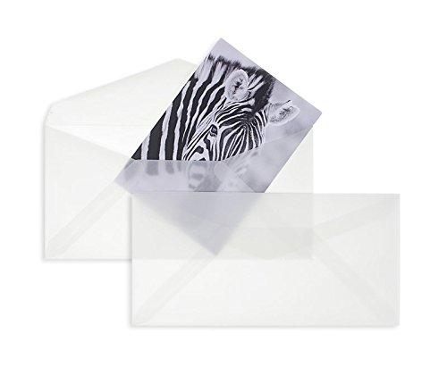 100 Stück, Transparente Briefumschläge, DIN Lang, Nassklebung, Spitze Klappe, 90 g/qm Offset, Ohne Fenster, Weiß (Transparent-Weiß), Blanke Briefhüllen