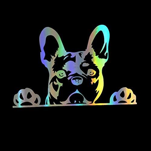 15.6X10.4CM Autoaufkleber Kreative Pfoten hoch Französische Bulldogge Frenchie Bully Hund Aufkleber und Abziehbilder Auto Styling Lustige Aufkleber auf Auto 1stk. Laser