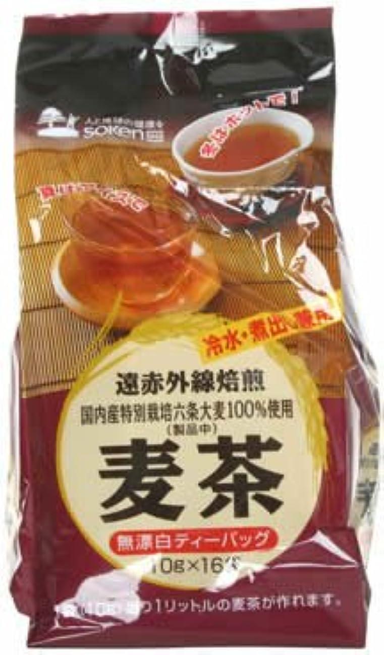右幻滅するブラインド創健社 遠赤外線焙煎 麦茶(国内産六条大麦100%) 10gx16袋