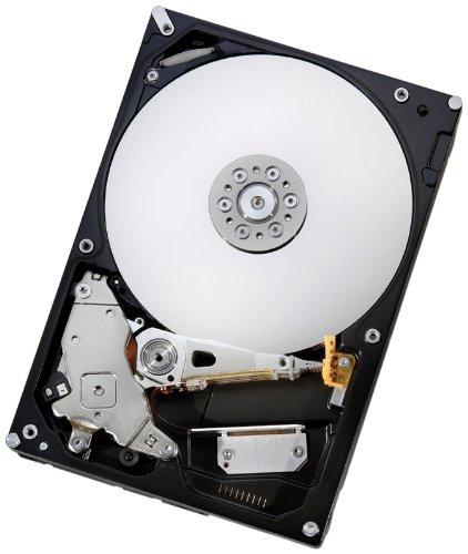 HGST Deskstar 3.5-Inch 2TB 7200RPM SATA II 32MB Cache Internal Hard Drive (0F10311)