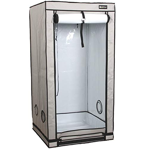Homebox Ambient Q80+ (Maße: 80x80x180cm)