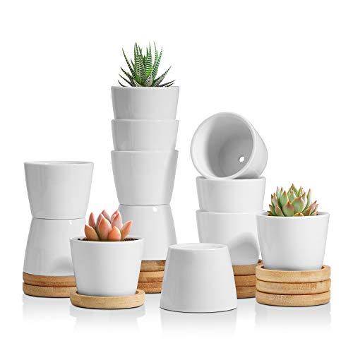 T4U 6cm Keramik Sukkulenten Kaktus Töpfe mit Untersetzer Rund 12er-Set, Klein Blumentopf Weiß für Moos Mini Zimmerpflanzen