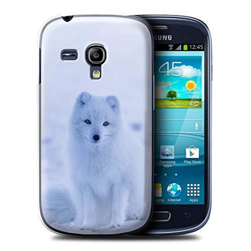 Hülle Für Samsung Galaxy S3 Mini Süß Baby Tier Fotos Weißer Polarfuchs Welpe Design Transparent Ultra Dünn Klar Hart Schutz Handyhülle Case