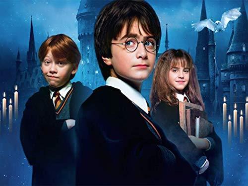 POENOEN Harry Potter 5D Diamond Painting Kit para Adultos, DIY Redondo Taladro Completo Cristal Pintura Diamante para Hogar/Decoración/Navidad/Regalo (40x30cm) 14