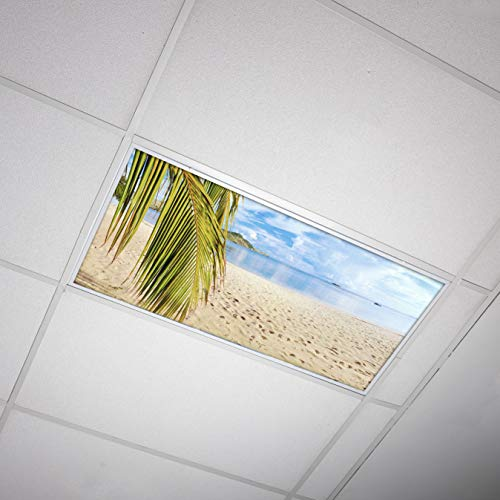 Octo Lights - Fluorescent Light Covers - 2x4 Flexible Decorative Light Diffuser Panels - Beach - for Classrooms and Offices - Beach 004