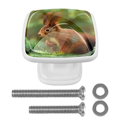 Perilla cuadrada de hardware de gabinete Blanco Ardilla linda Perillas de vidrio de colores para tocador con tornillos de montaje, 4 paquetes 3x2.1x2 cm