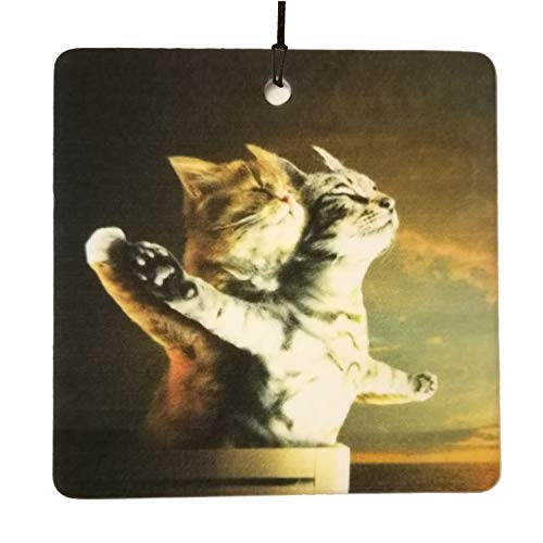 Titanic Kittens Car Air Freshener