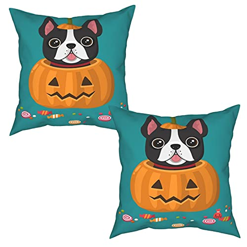 Fiephvsa Halloween Cute French Bulldog on Halloween Pumpkin Decorative Square Throw Pillow Covers Set 12'X12' for Sofa Living Room Pack of 2 Four Seasons Pillow