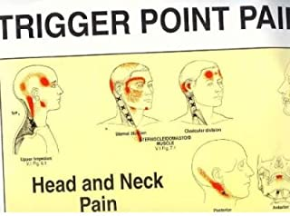 [Trigger Point Pain Patterns Wall Charts] [Author: Travell, Janet] [January, 1994]