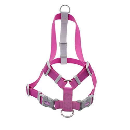"""Coastal - Pro - Waterproof Harness, Purple, 3/4"""" x 16""""-24"""""""