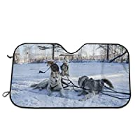 車用シートカバー イルクーツク、ロシアでそりのかわいい若いシベリアンハスキー犬 おしゃれ かわいい マルチカラー 軽自動車 普通車 フロント座席適用1 PCS