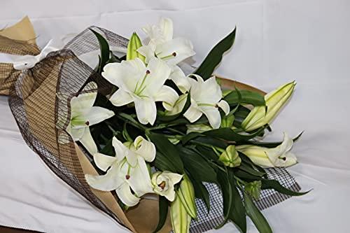 カサブランカ 15輪の花束
