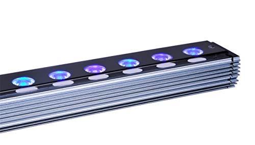 Orphek OR3 - Barra LED para acuario de arrecifes de coral, color fluorescente, crecimiento e iluminación - LED de chip dual de 5 vatios