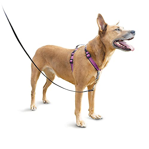 PetSafe 3in1 Harness, from The Makers of The Easy Walk Harness, Fully Adjustable No-Pull Dog Harness,Plum,Medium