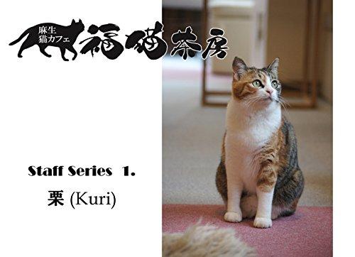 Fukunekosabou staff series 1 Kuri (Japanese Edition)