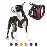 Gooby Choke Free Comfort X Soft Dog Harness, Small, Purple