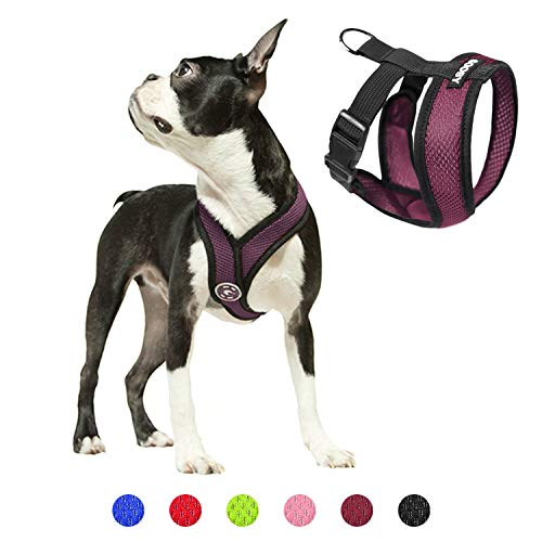 Gooby Dog Harness - Purple, Large - Comfort X Head-in Small Dog Harness with Patented Choke-Free X Frame - Perfect on The Go No Pull Harness for Small Dogs or Cat Harness