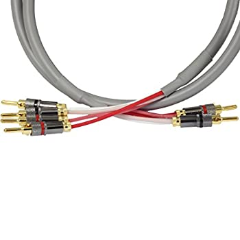 Blue Jeans Cable Canare 4S11 Speaker Cable with Welded Locking Bananas Bi-Wire Terminations Grey Jacket 10 Foot  Single Cable - for one Speaker   Assembled in The USA