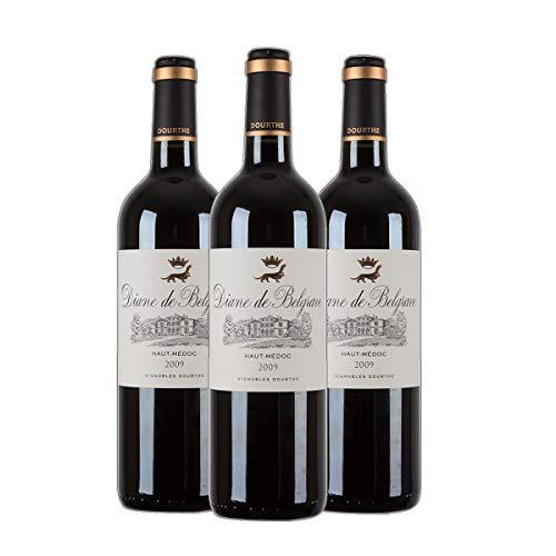 Diane de Belgrave Haut Médoc 2013 Bordeaux Rotwein Frankreich trocken (3x 0.75 l)