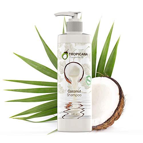 Tropicana Oil Kokos Shampoo mit Nativem Kaltgepresstem Bio Kokos Öl 240ml Ginseng Extrakt & Nelkenöl Vegan Natur Kosmetik Cocos Shampoo ohne Sulfate Parabene und Silikone Shampoo Naturkosmetik