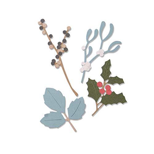 Sizzix 663425 Winter Leaves by Sophie Guilar Stanzschablonen, Mehrfarben, Einheitsgröße