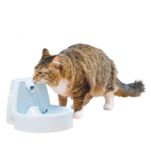 PetSafe Drinkwell Original Dog and Cat Water Fountain