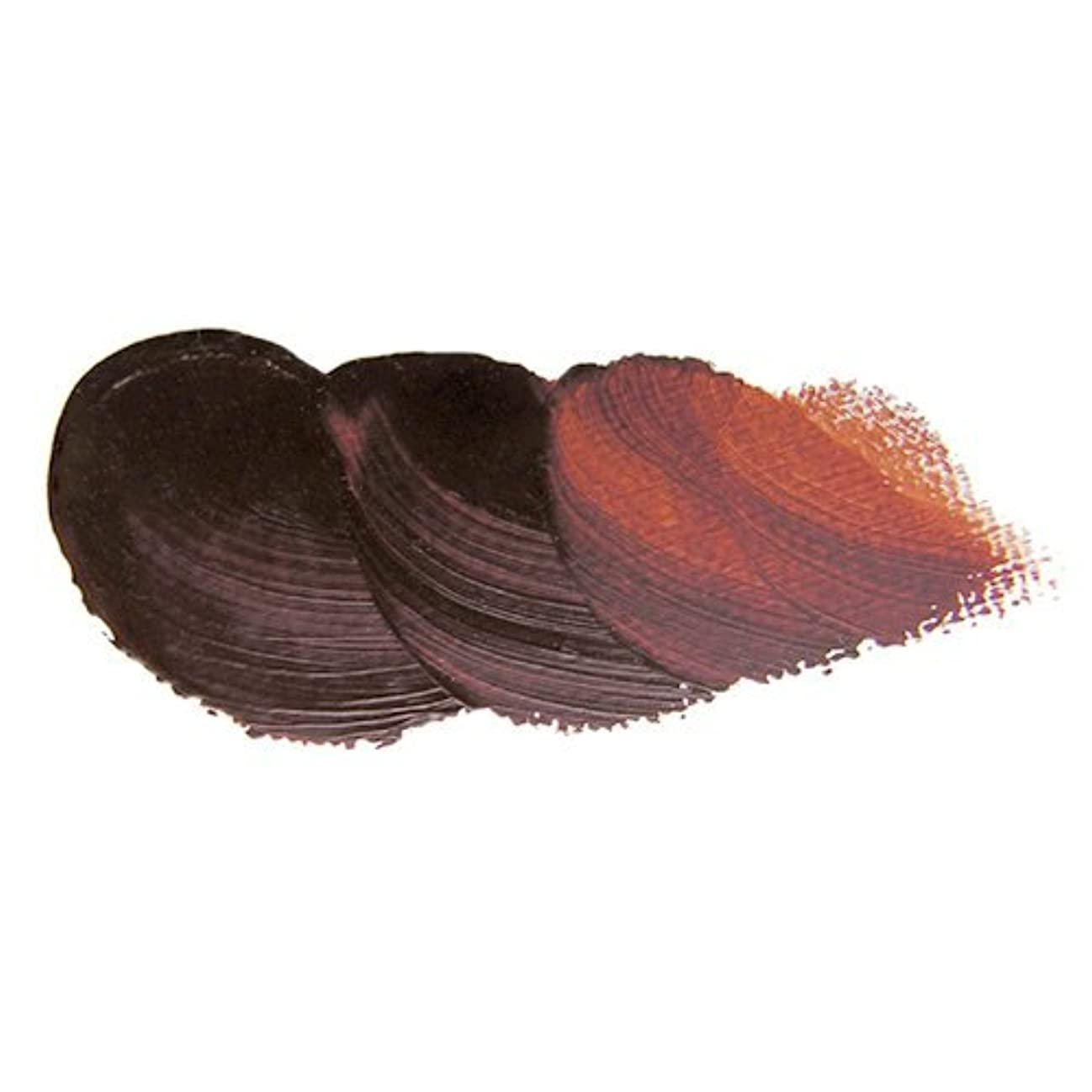 濃度特別にみなすホルベイン 油絵具 高品位油絵具 ヴェルネ バーントシェンナ V065 20ml(6号)