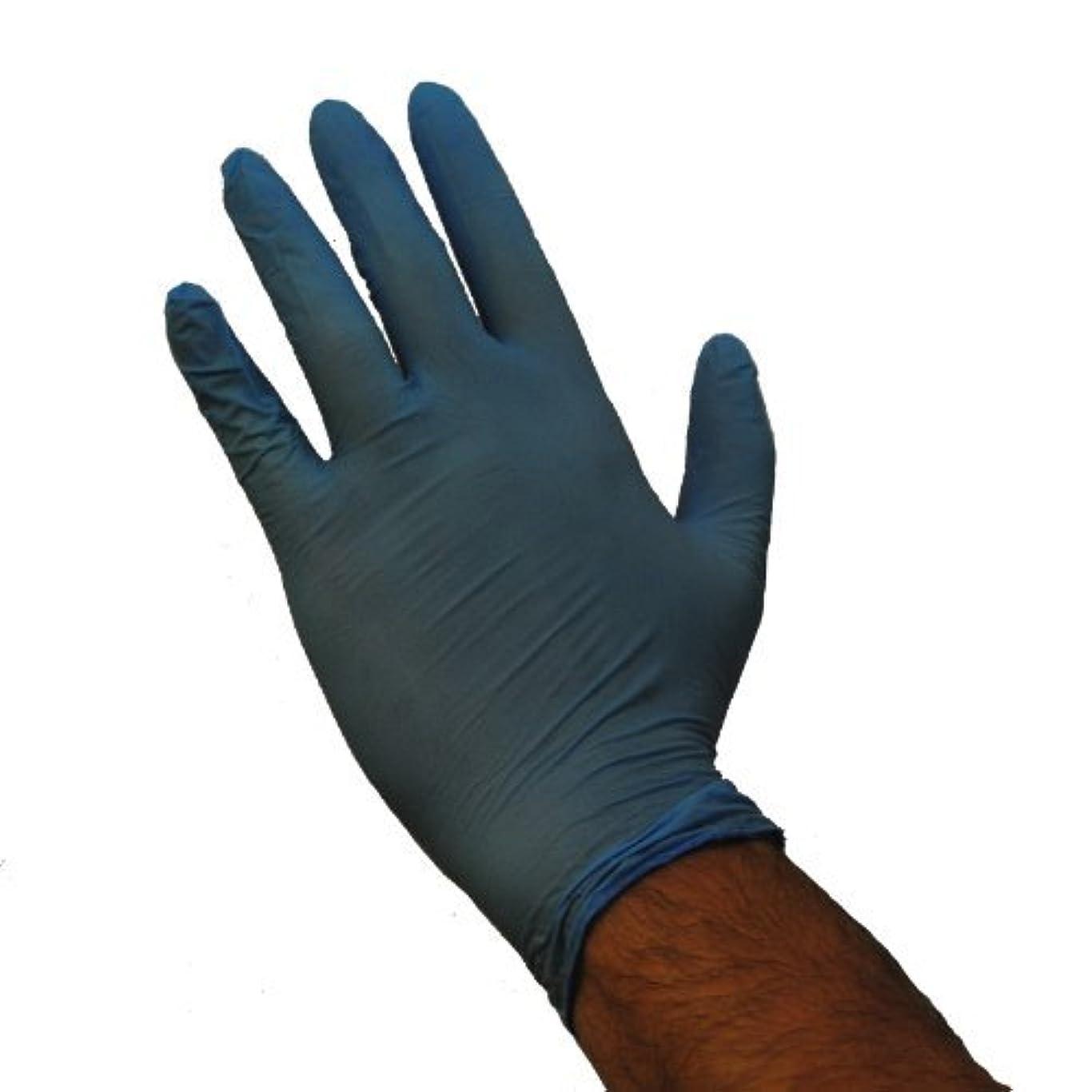 クリスチャン拷問火山Emerald Shannon Blue Powder-Free Vinyl 4 Mil Gloves Case Large [並行輸入品]