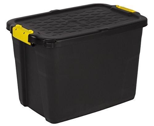 Robuste Transport- und Lagerbox