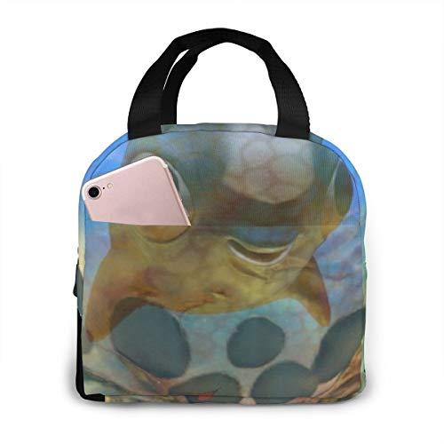 Subnautica Kuschelfisch-Ei, tragbare, isolierte Lunchtasche, große Kapazität, Kühltasche für Outdoor, Picknick, Schule, Büro, Arbeit, Lunchbox, Organizer mit Fronttasche
