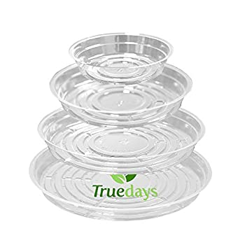 TRUEDAYS 20 Pack 6 inch/8inch/10inch/12inch  Clear Plant Saucers Flower Pot Tray Excellent for Indoor & Outdoor Plants