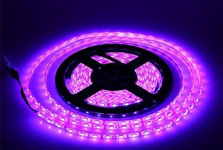 Lumcrissy led light strip -12V LED Strip Lights Waterproof 3528 SMD 5M 300LED 300 Units LEDs Light Strip (No Adapter)