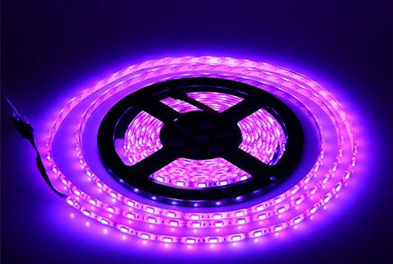 Lumcrissy led light strip -12V LED Strip Lights Waterproof 3528 SMD 5M 300LED 300 Units LEDs Light Strip (No Adapter)