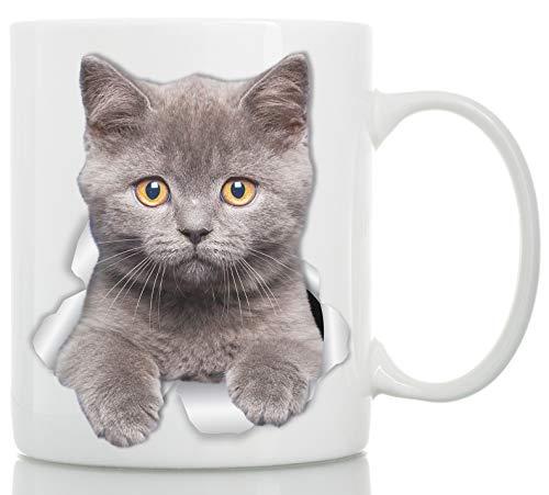 Winston & Bear Taza de Gato Británico de Pelo Corto - Taza Gato Pelicorto Inglés de Cerámica para Cafe Gatito Británico - Divertida y Bonita Taza de Café para Amantes de los Gatos