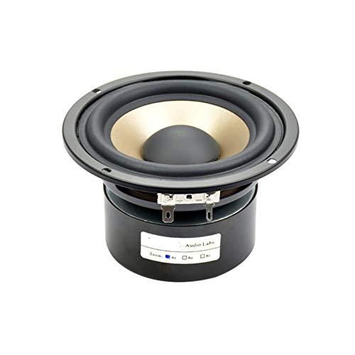 WNJ-TOOL, 1 stück 4inch 30w Audio tragbarer Lautsprecher 4Ohm HiFi-Lautsprecher Subwoofer doppelt magnetische Basslautsprecher für Heimkino-Sound