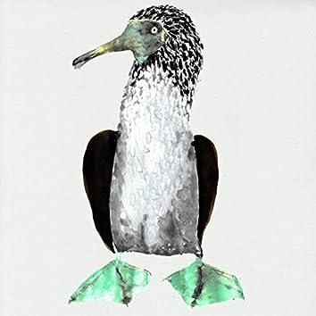 Galápagos (Original Series Soundtrack)
