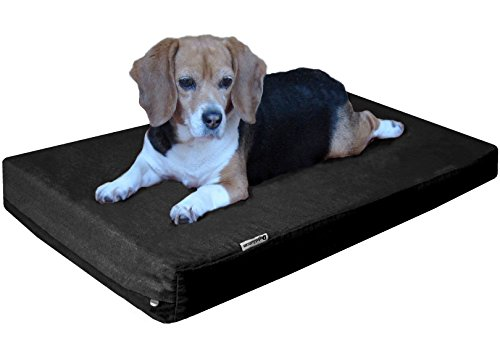 Dogbed4less Orthopedic Memory Foam Dog Bed with Heavy Duty Black Canvas Cover, Waterproof Liner and Extra Pet Bed Case, Small Medium Gel Cooling 35X20X4 Pad