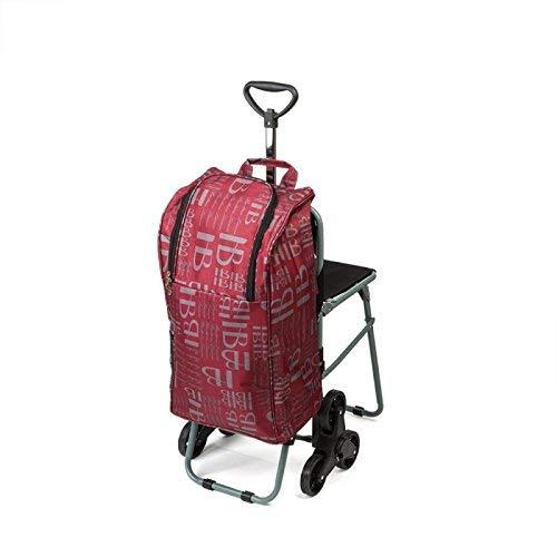 Einkaufstrolley mit 6 Rädern und Sitz