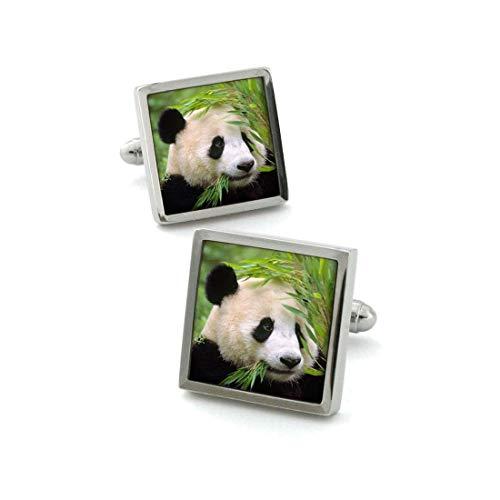 Robert Charles. Boutons de Manchette. Panda, Acier rhodié. Vert, Motifs.