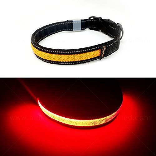 Toozey LED Leuchthalsband für Hunde mit 3 Beleuchtungsmodi, Einstellbare Länge und USB Aufladbar und Wasserdicht Nylon Leuchtendes Hundehalsband, Hohe Sicht und Sicherheit für Ihren Hund, Orange S