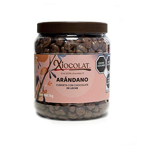 Xiocolat Arandano con Chocolate de Leche (1 VITROLERO)