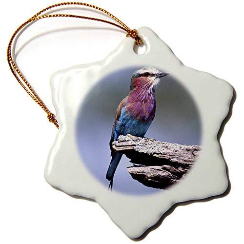 VinMea Lilac Breasted Roller, Bird, Tanzania Africa NA Dno David Northcott Snowflake Porcelain Ornament, Christmas Ornament Keepsake