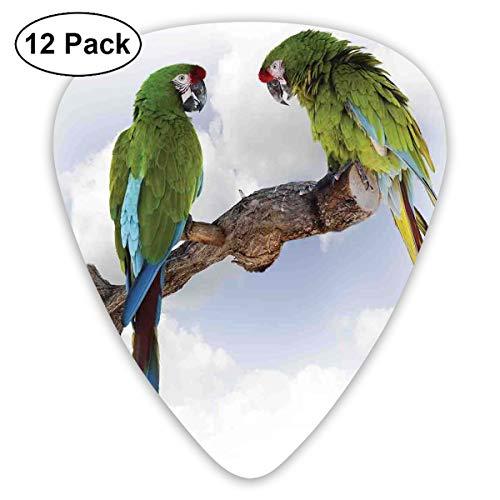 Gitaar Picks12pcs Plectrum (0.46mm-0.96mm), Twee Papegaai Macaw Op Een Tak Pratende Vogels Slimme Wezens Van De Natuur,Voor Uw Gitaar of Ukulele
