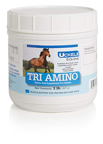 Uckele Tri Amino Supplement, Amino Acid Support for Horses, 2 lb