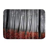 VINISATH バスマット 風呂マット 灰色の赤い森の花 足拭きマット 吸水 速乾 滑り止め 浴室 洗面所 脱衣所 風呂 台所 キッチン玄関マット(45x75cm)
