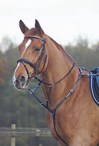 vorderzeug pony