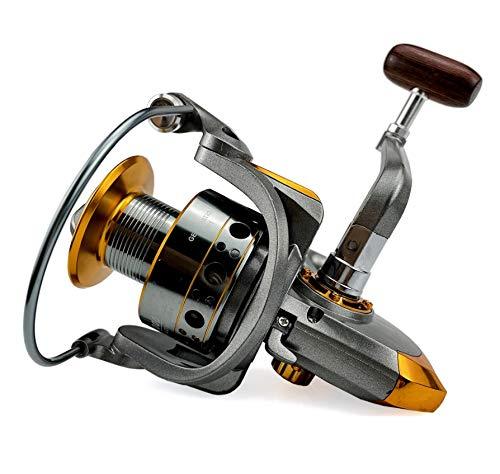 AFANGMQ Carrete de Pesca Carpa Reel Spinning 10kg MAX Drag 13BB 5.2: 1 Carrete de aleación Carrete del Barco de mar para Agua Salada o Agua Dulce (Size : 2000 Series)