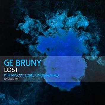 Lost (Remix Edition)