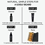ZEUS Essential Refined Beard Oil Set - Best Starter Kit for Softer Hair and Itch Free Skin (VERBENA LIME) 7