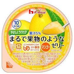 ハウス食品 やさしくラクケア まるで果物のようなゼリー マンゴー 60g×48個入×(2ケース)